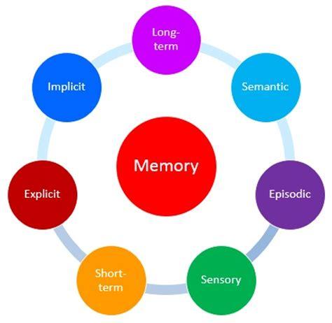 Short term memory Essay, Short term memory Research papers