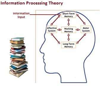 Stress and Short Term Memory Research Paper 94996