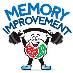 The Study of Human Memory - The Human Memory